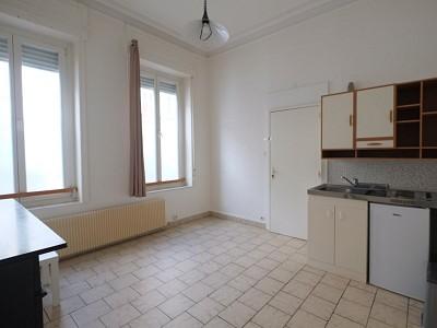 APPARTEMENT T1 A LOUER - LILLE VAUBAN - 20 m2 - 480 € charges comprises par mois